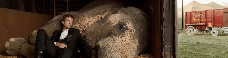 WATER FOR ELEPHANTS(2011)